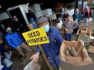 Potato Day organised by Shropshire Organic Gardeners