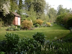 Unusual plants and views at Shropshire gardens this weekend