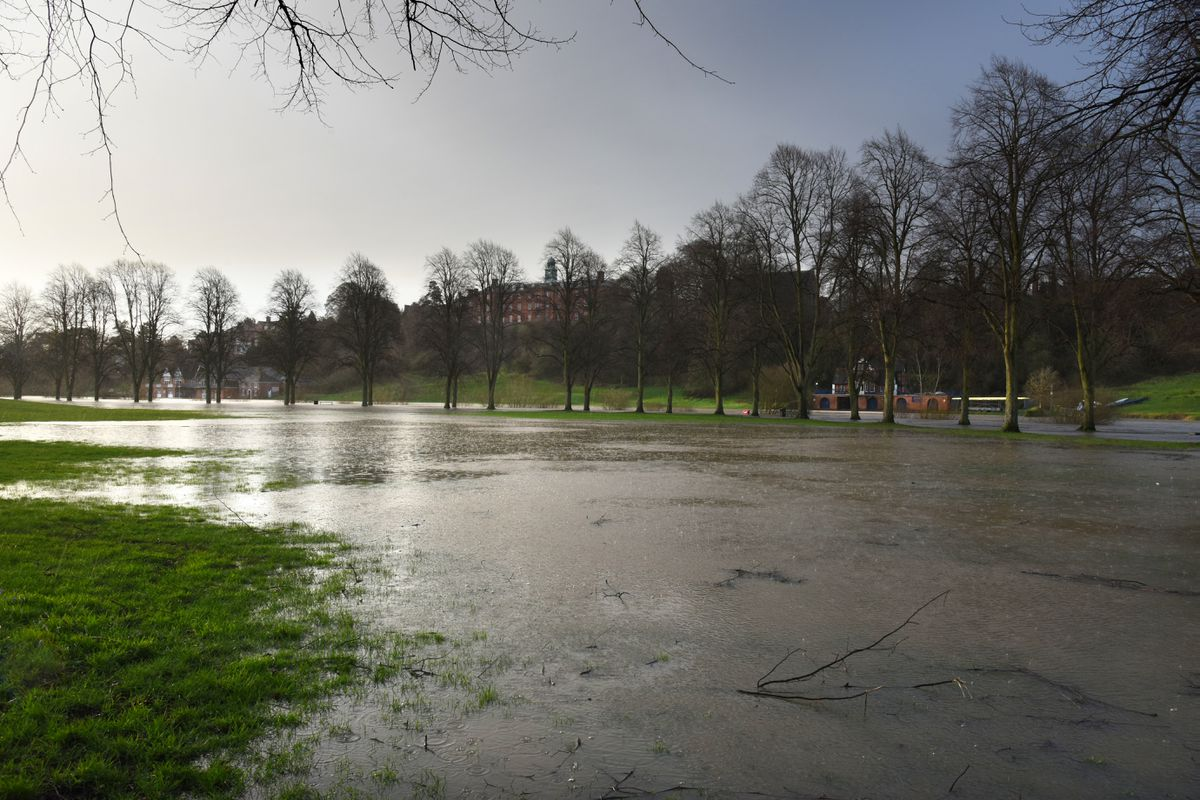 Shrewsbury flooding: Quarry Park as of 8am this morning. Pic: Russell Davies