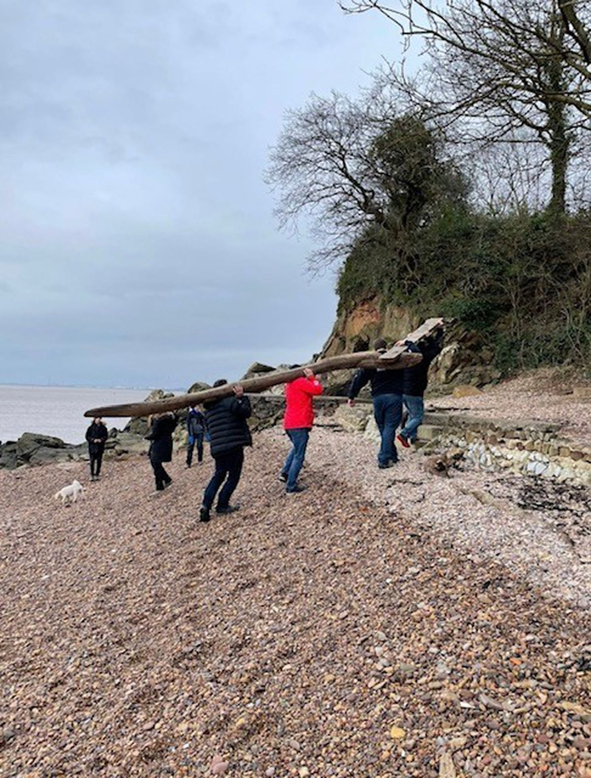 The eel washed up at Portishead beach in Somerset. Pictures: Michelle Lucking