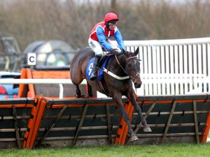 Quinta Do Mar ridden by Nico de Boinville
