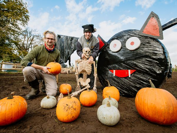 LAST COPYRIGHT SHROPSHIRE STAR JAMIE RICKETTS 20/10/2020 - Pre-Pic for Pumpkin Hunt at Fordhall Organic Farm in Market Drayton. In Picture L>R: Mike Grabarz and Anthony Lewis..