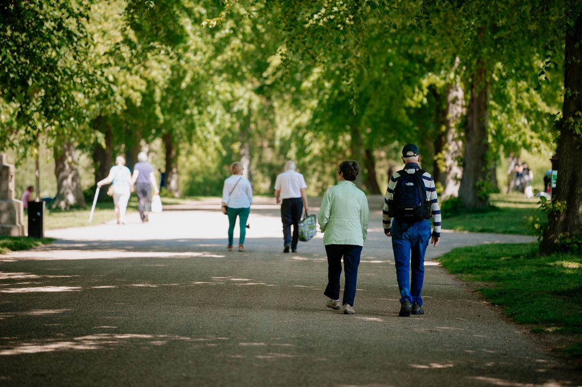 There will be increased litter patrols in Shrewsbury's Quarry