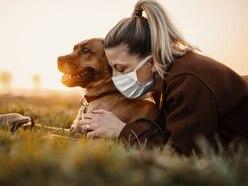 Leaving paw prints on the heart: The joy of pets