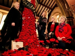 Village remembers the fallen with cascading poppy waterfall