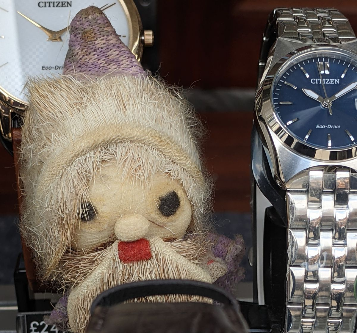 A cheeky chap hiding amongst watches in Newport