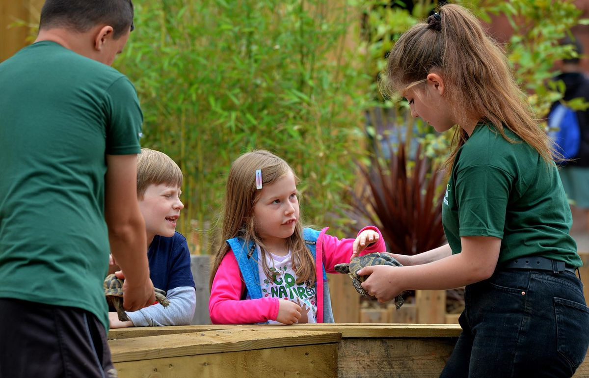 Hands-on fun for youngsters at the Exotic Zoo