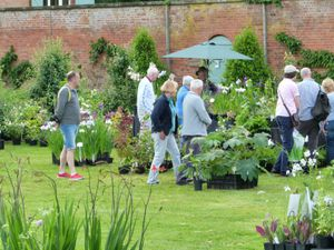 Previous plant fairs at Sugnall Walled Garden have proved popular