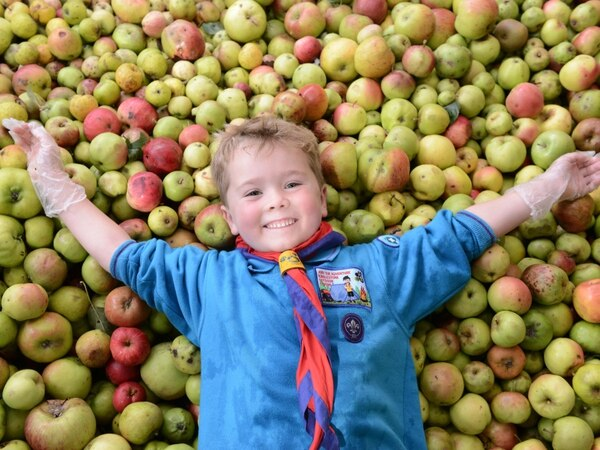 Core, what a lot of apples: Ironbridge event sees 800 litres of juice produced