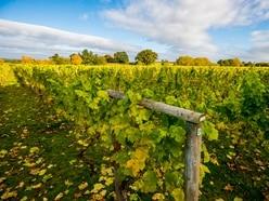 New book celebrates region's drink heritage