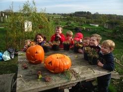 Halloween fun at Market Drayton farm