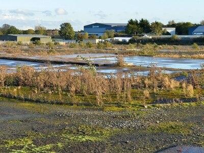 Highways England backs supermarket plan for Oswestry Smithfield site