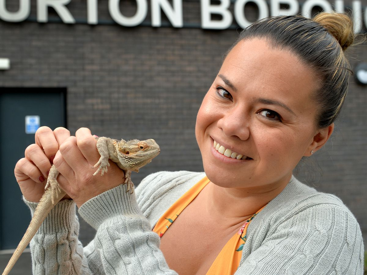 LAST COPYRIGHT TIM STURGESS SHROPSHIRE STAR...... 27/08/2020...   The Burton Borough School , Newport,head teacher Krissi Carter making final preparations to the classrooms and school before students return next week. Pictured, Krissi, Monty the bearded dragon , found in the school during lockdown and became the schools 'lockdown mascot'..