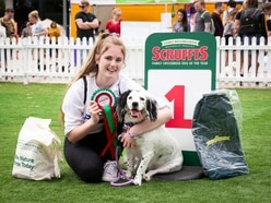 Willow wins title at crossbreed competition