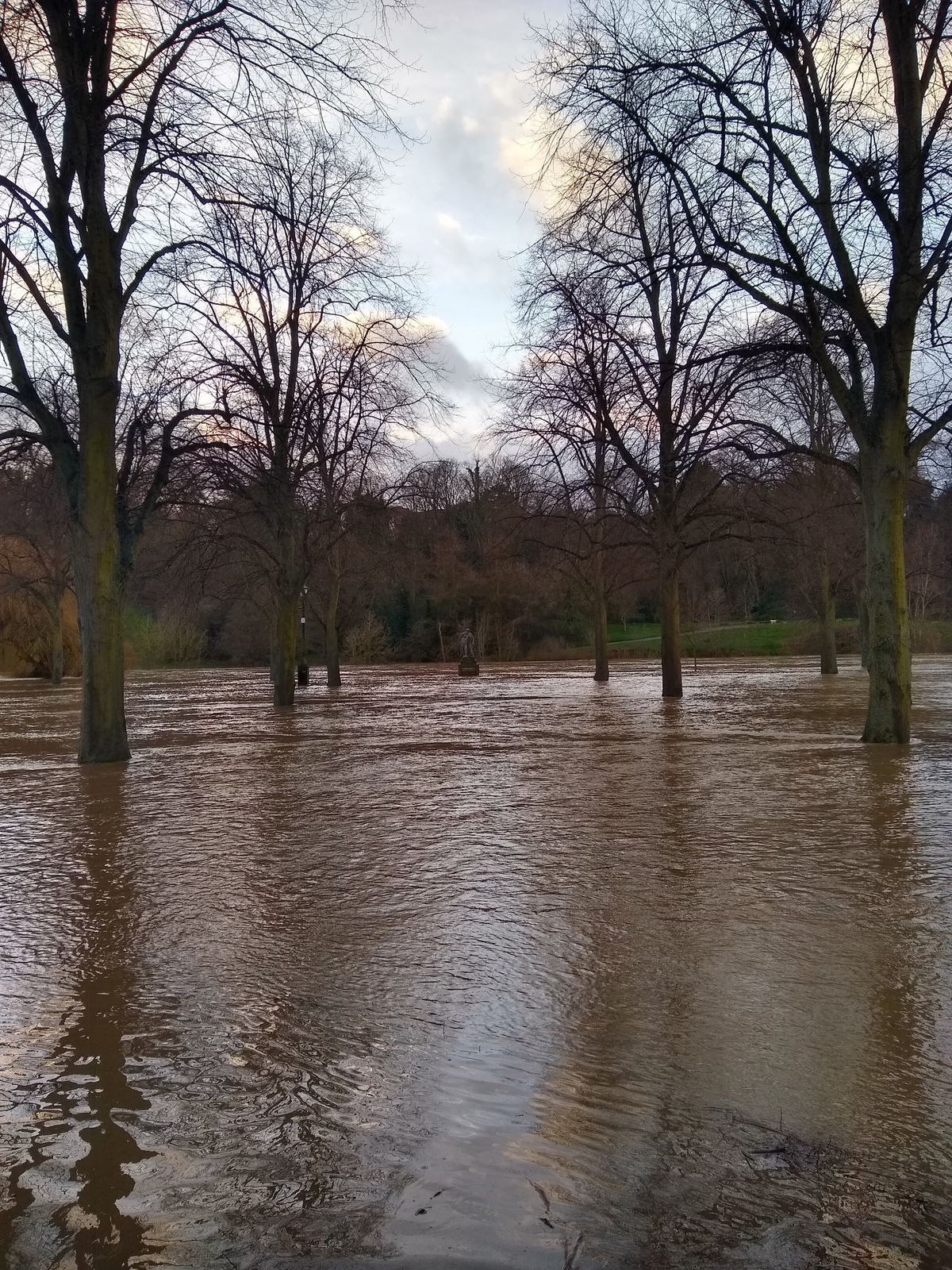 Flooding around Hercules in the Quarry Park