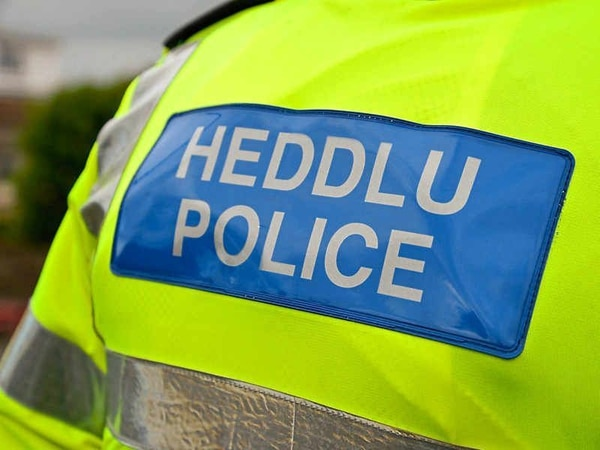 Police appeal after car smashes into garden wall