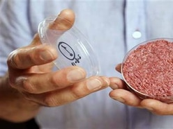 Will man-made meat give us food for thought?