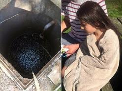 Bridgnorth girl, 8, violently ill after falling into pub sewage tank