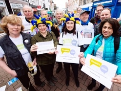 Pro-Europe campaigners spread message in Shrewsbury
