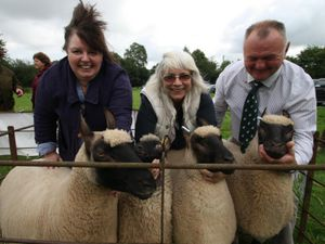 Clun Forest Sheep Breeders Society chairwoman Steph Thackery with secretary Sue Scrivens and Harold Marsh, with some of Steph's registered Clun Sheep. Pic: Lillian Tomlinson