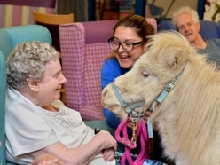 Special visitors trot into Shrewsbury care home