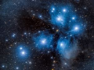 The Pleiades star cluster, pictured by Peter Williamson of Shropshire Astronomical Society.