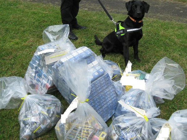 Some of the seized goods. Photo: Shropshire Council