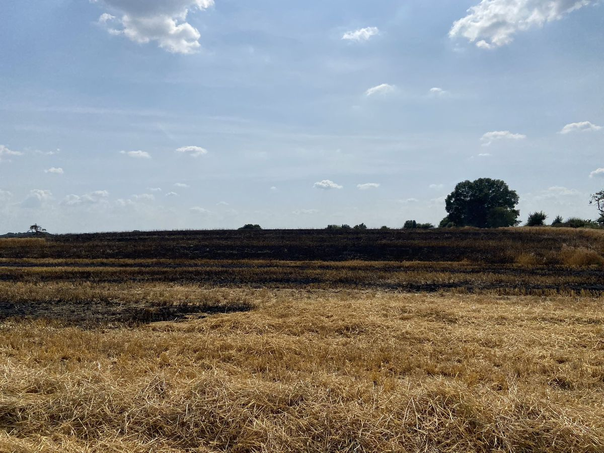 The burnt out crops. Photo: Shropshire Fire & Rescue