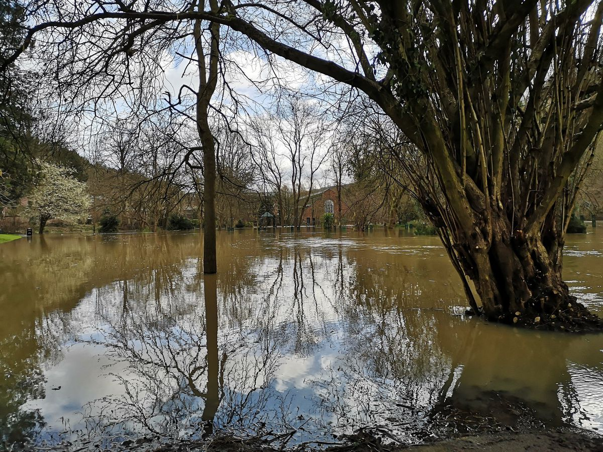 Dale End Park under water on Tuesday. Photo: Liam Ball