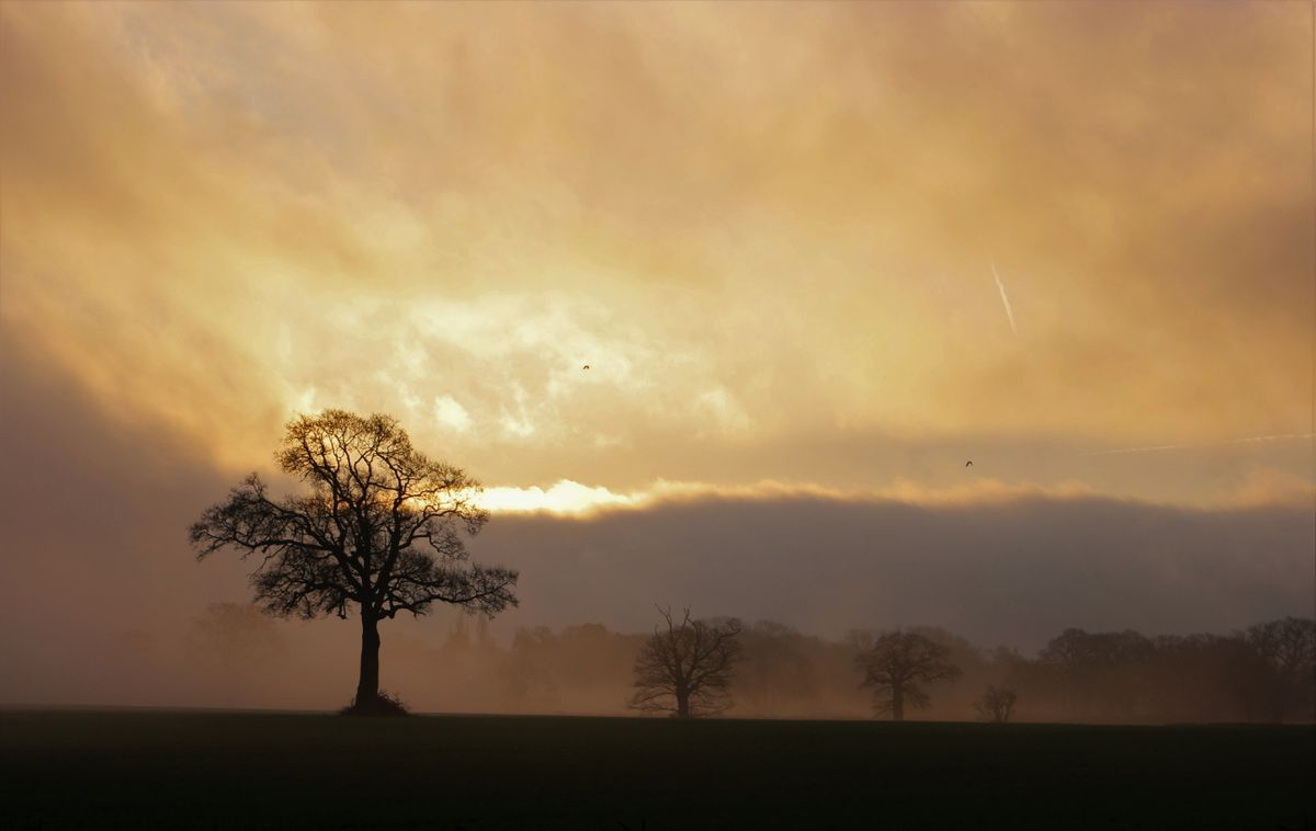 Graeme Morris's early hours shot is named Golden Dawn