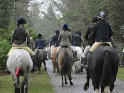 Group urges Trust to ban Long Mynd hunts