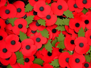 General view of poppy badges at the Armed Forces Memorial in preparation for a Service of Remembrance on Armistice Day at the National Memorial Arboretum, Alrewas, Staffordshire. PRESS ASSOCIATION Photo. Picture date: Thursday November 10, 2011. Photo credit should read: Rui Vieira/PA Wire